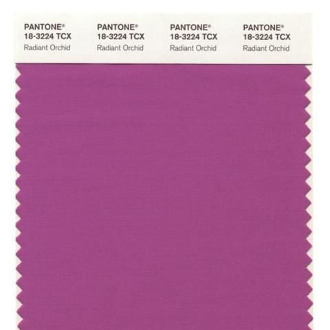 Pantone Color of the Year-Radiant Orchid...radiant indeed.